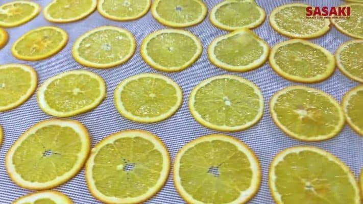 Giá máy sấy trái cây công nghiệp
